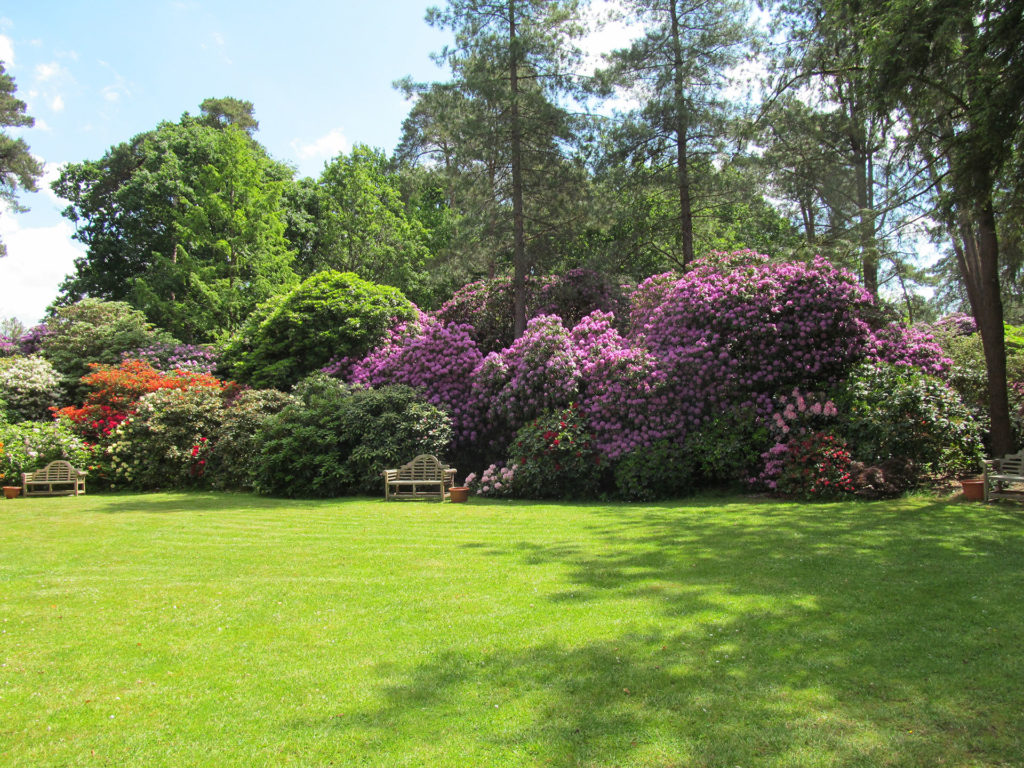 Rhododendrenpark